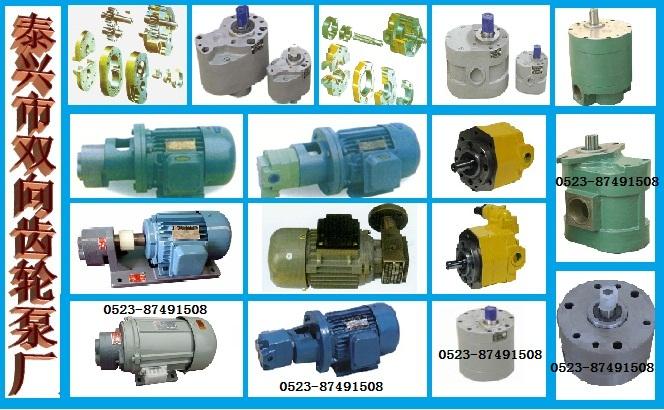 齿轮泵,齿轮油泵,双向齿轮油泵,双向润滑油泵