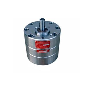 CB-Bns4,CB-Bns6,CB-Bns10不锈钢齿轮泵