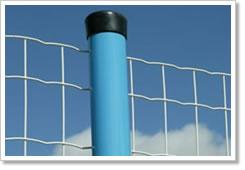 供应小公园围栏网 电焊网