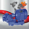 不锈钢齿轮泵,齿轮油泵,防爆齿轮泵