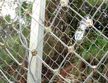 哪里的边坡防护网好,南宁隔离栅生产,隔离栅报价