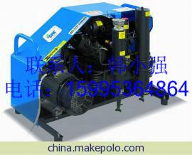 呼吸器充气泵/空气压缩机