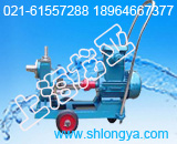 25FY-6浸液0.5米槽罐液下泵