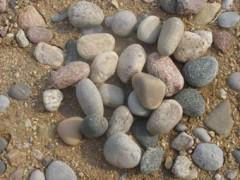 鹅卵石,大鹅卵石,变压器鹅卵石