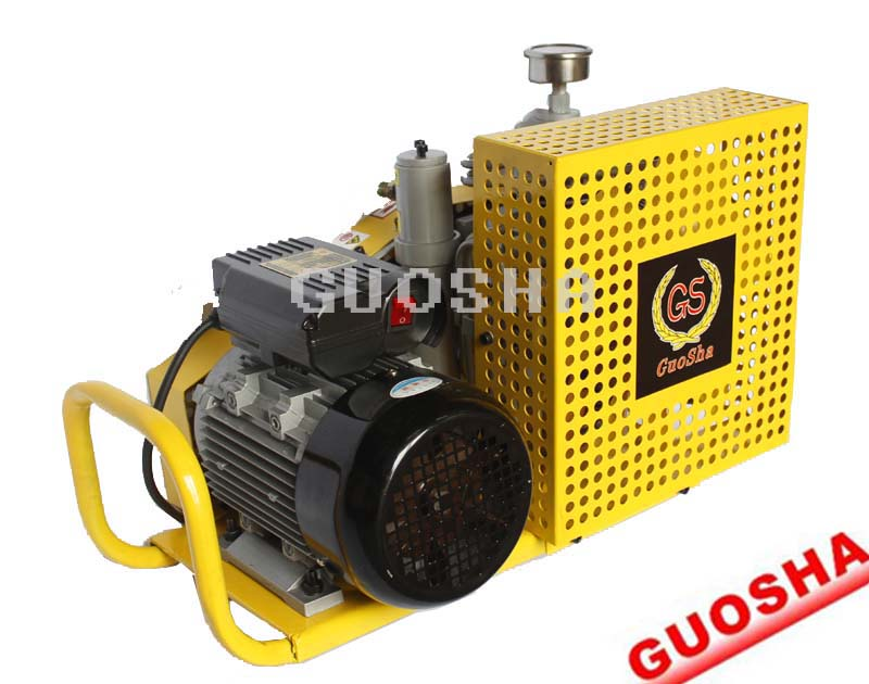 国厦牌呼吸器充气泵/小型空气呼吸器充气泵