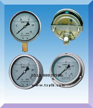 抗震压力表型号规格,量程,精度等级