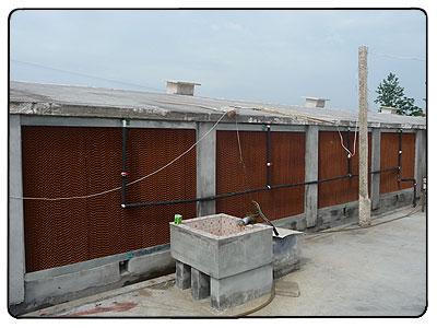 养殖温控锅炉专业生产商