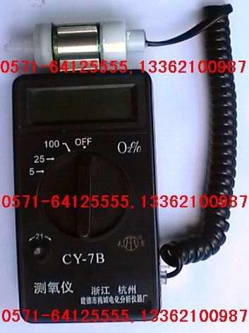 氧分析仪CY-7B氧气分析仪手持式测氧仪