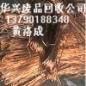 铜带回收报价,铜粉回收公司,东莞废铜回收