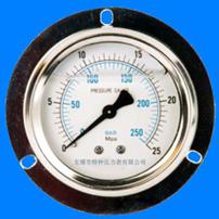 带边盘装耐震压力表