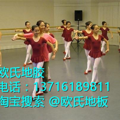 欧式地板芭蕾教室图片