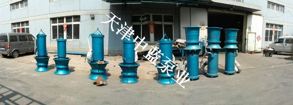 天津中蓝泵业直销防洪混流泵
