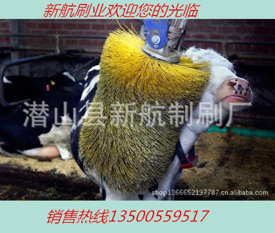 厂家批发奶牛清洗毛刷蹭痒毛刷辊
