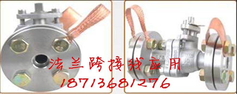 全紫铜法兰跨接线|紫铜编织静电跨接线