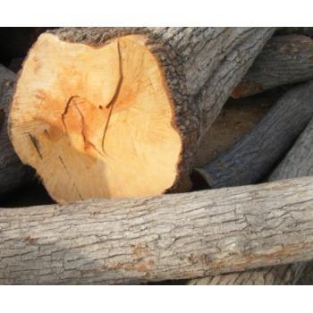 暖通制冷,建材建筑 木质材料   普通会员现在询价 ¥ 1000.