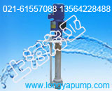 80FYS-20耐腐蚀废液液下泵