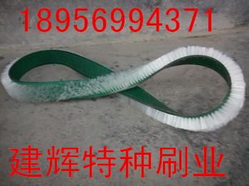 供应制药厂优质橡胶皮带刷传送皮带刷