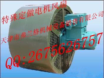 YPQT500系列电机定做配套冷却风扇