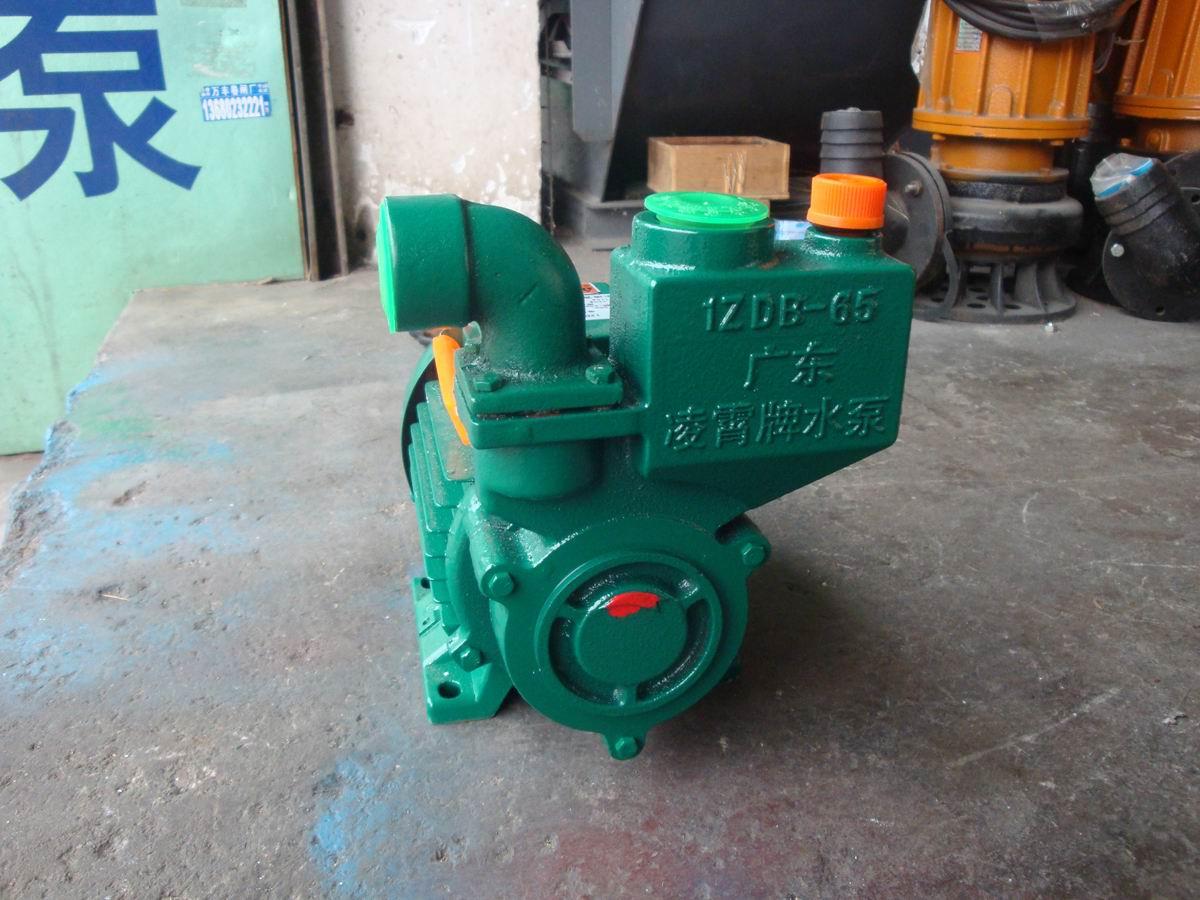 广东凌霄泵业 1ZDB65T 工业清水增压泵