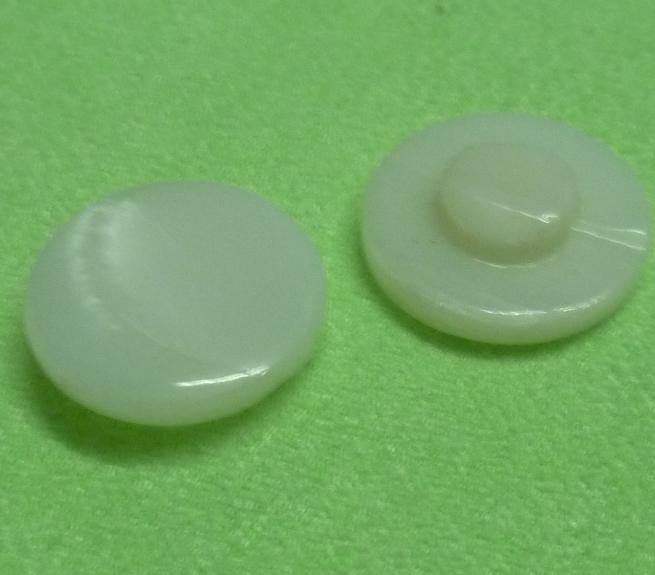 塔螺贝壳蘑菇纽扣