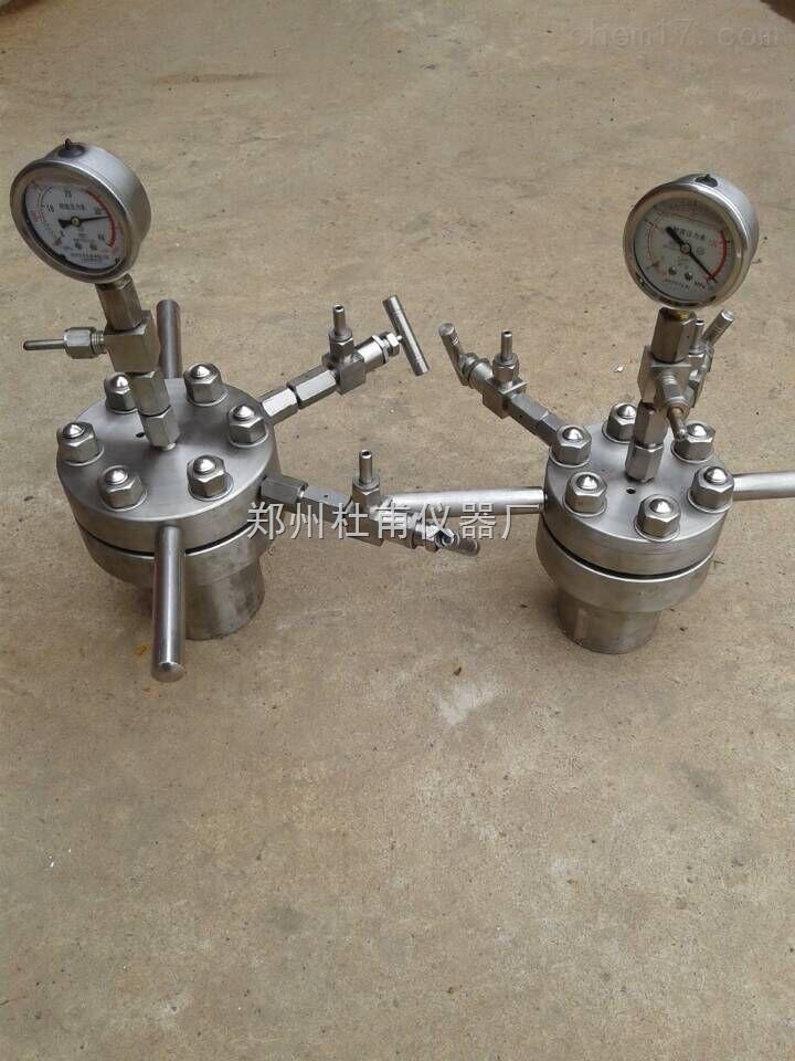 CF-100ML小型简易加热搅拌水热反应釜