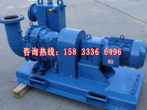 供应衡水转子泵直销厂